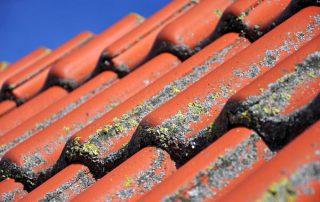 levensduur dakpannen
