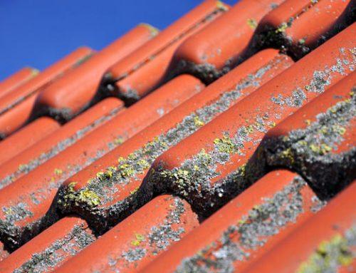 Wat is de levensduur van dakpannen?